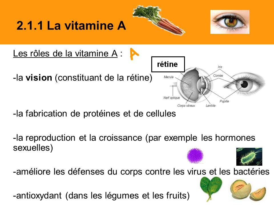 A 2.1.1 La vitamine A Les rôles de la vitamine A :