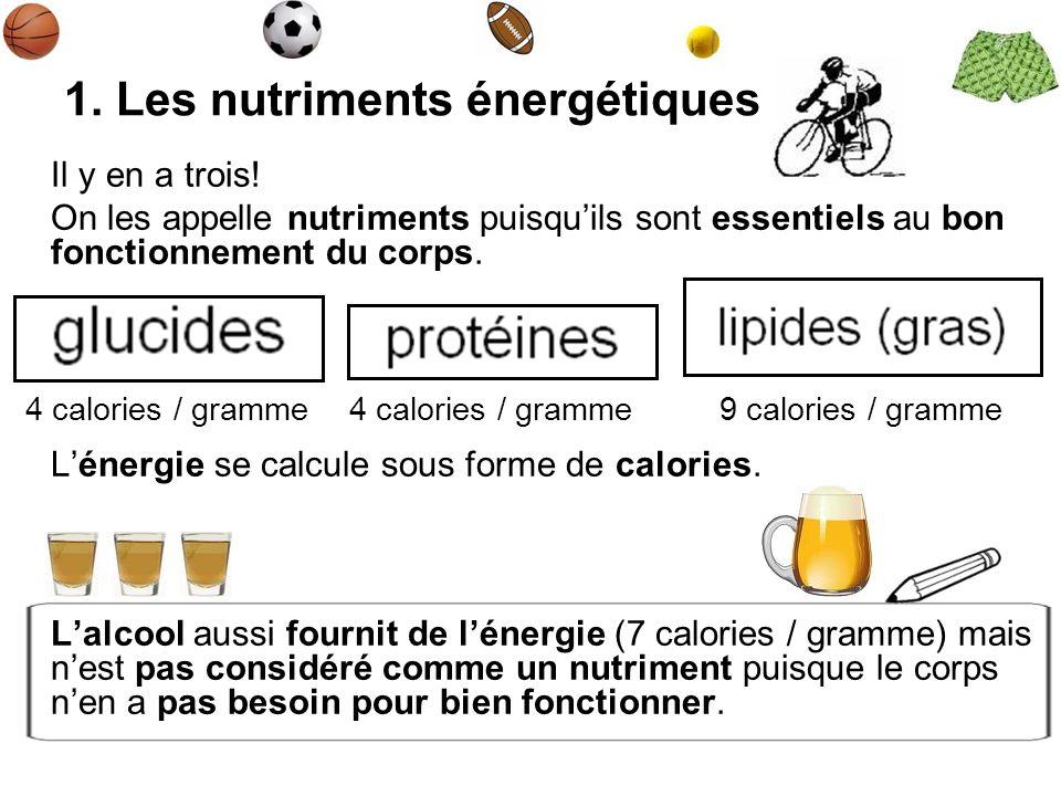 1. Les nutriments énergétiques