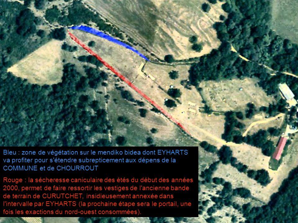 Bleu : zone de végétation sur le mendiko bidea dont EYHARTS va profiter pour s étendre subrepticement aux dépens de la COMMUNE et de CHOURROUT