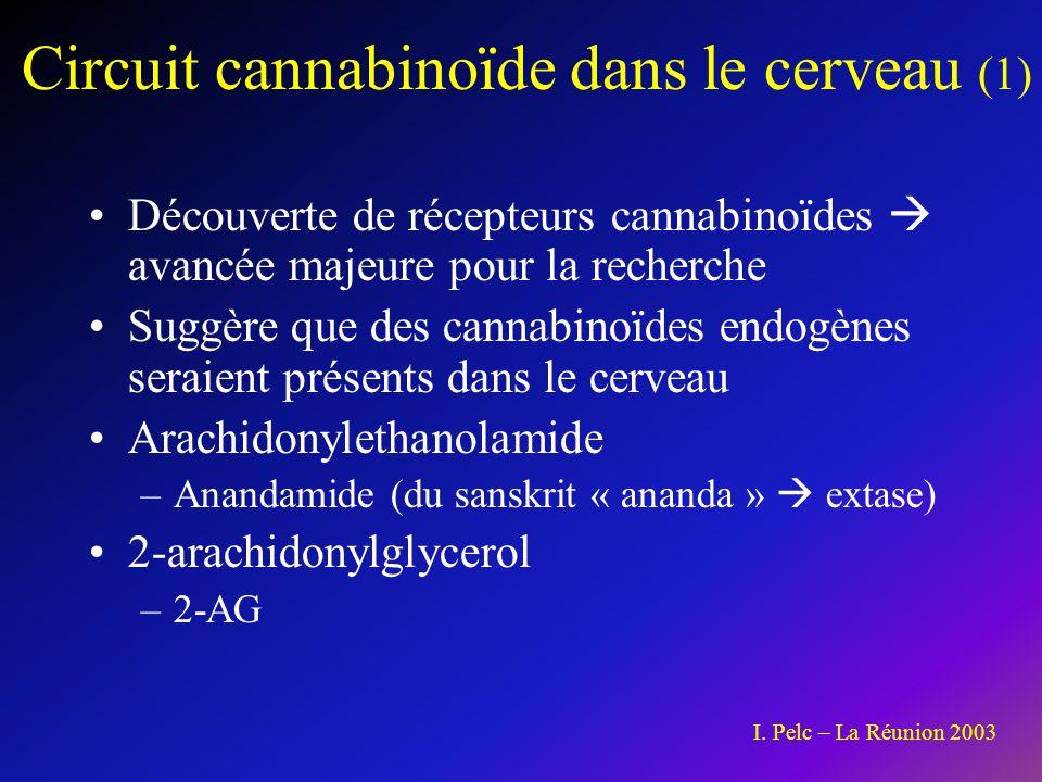 Circuit cannabinoïde dans le cerveau (1)