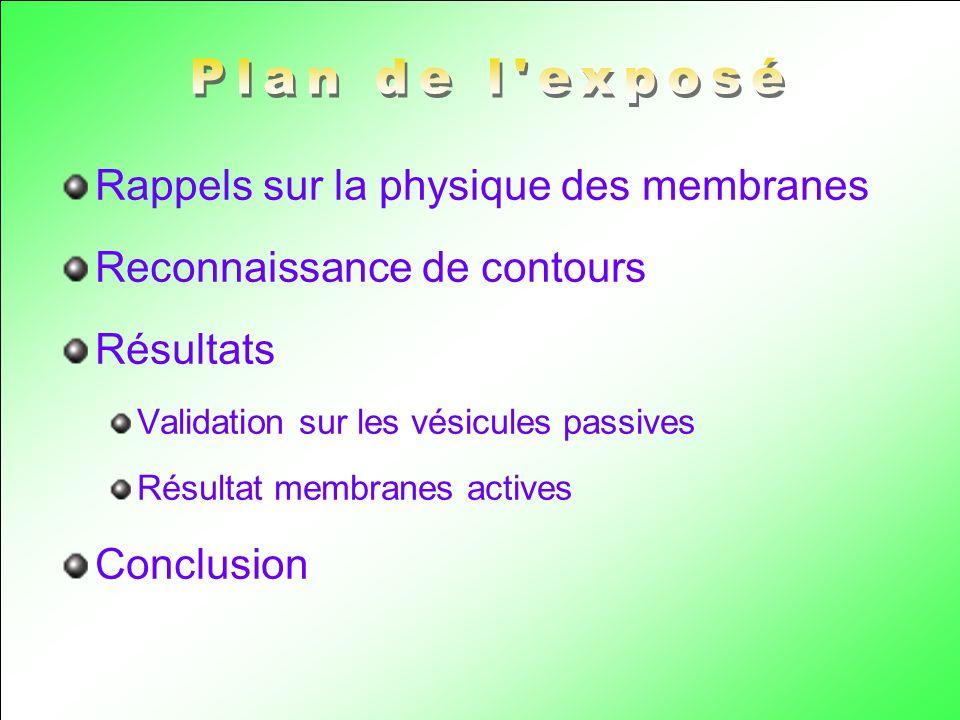 Plan de l exposé Rappels sur la physique des membranes
