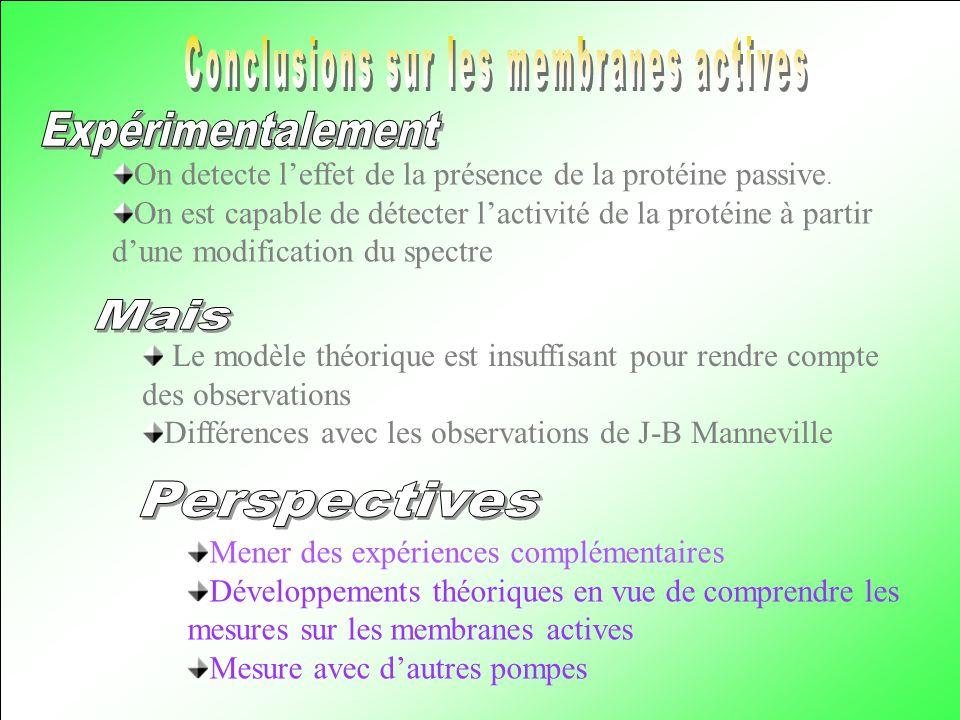 Conclusions sur les membranes actives