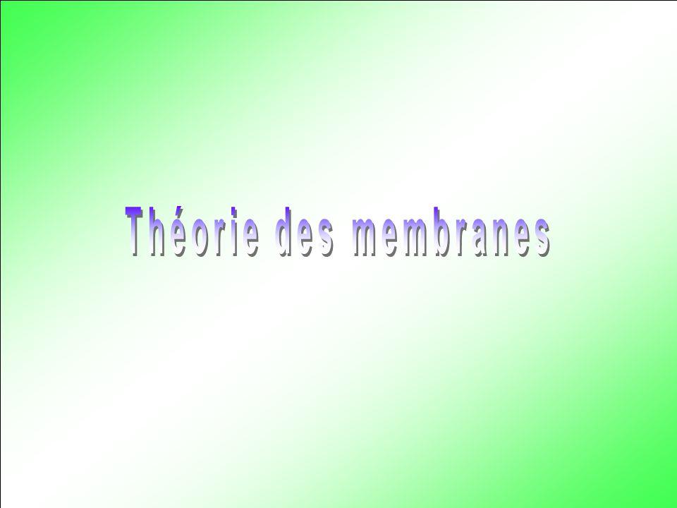 Théorie des membranes