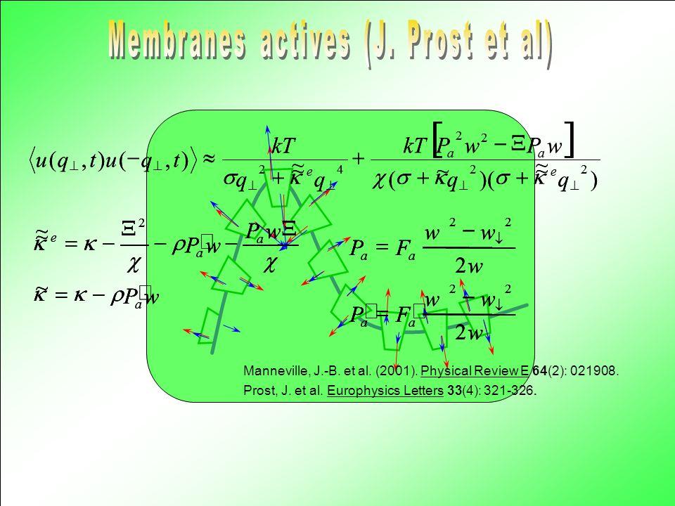 Membranes actives (J. Prost et al)