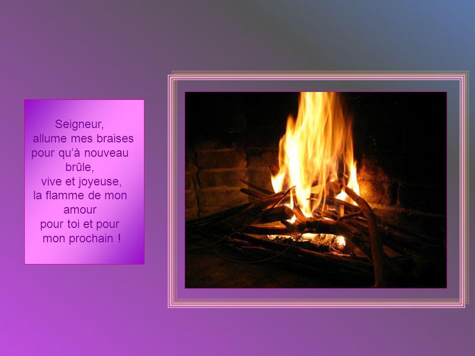 Seigneur, allume mes braises. pour qu'à nouveau. brûle, vive et joyeuse, la flamme de mon. amour.