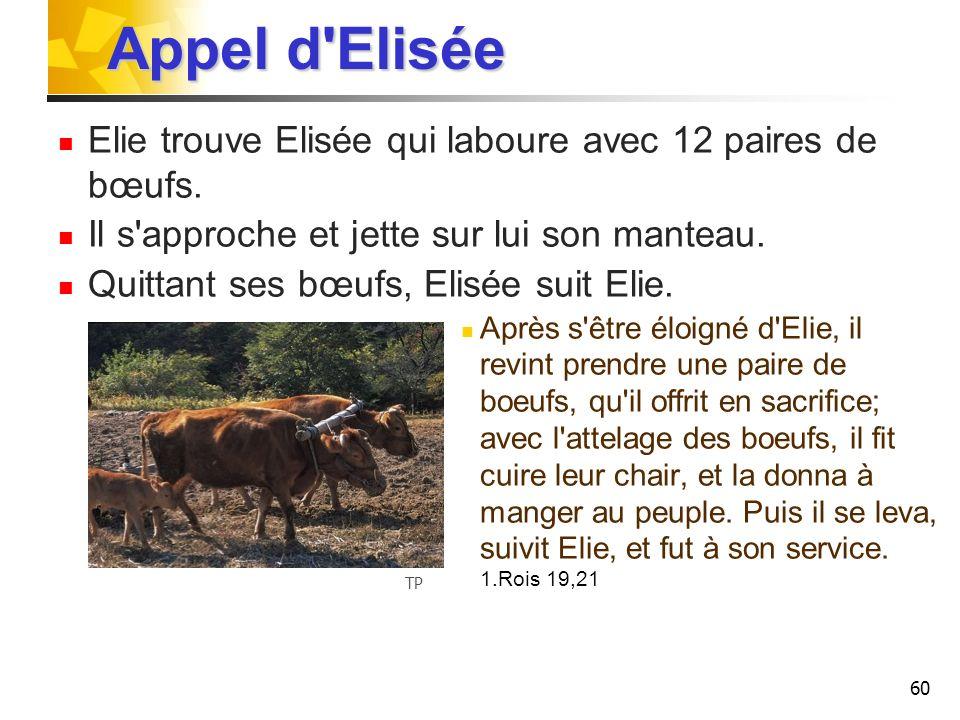 Appel d Elisée Elie trouve Elisée qui laboure avec 12 paires de bœufs.