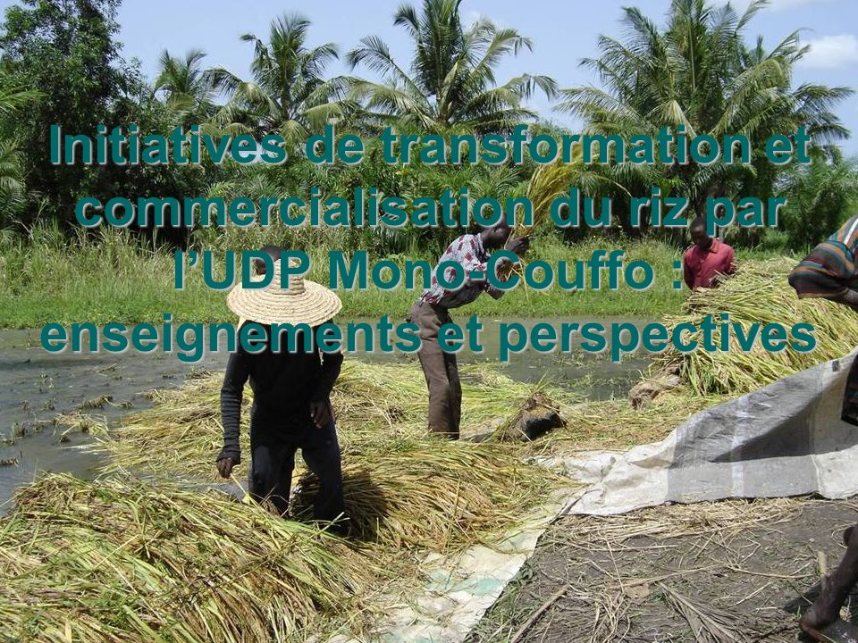 Initiatives de transformation et commercialisation du riz par l'UDP Mono-Couffo : enseignements et perspectives