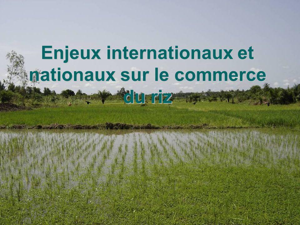 Enjeux internationaux et nationaux sur le commerce du riz
