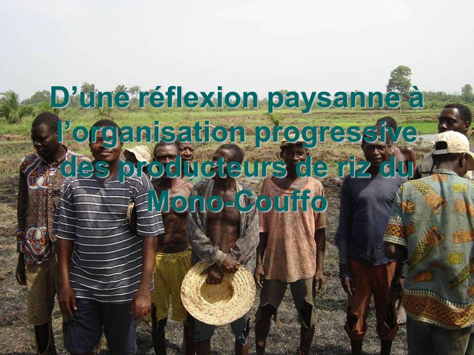 D'une réflexion paysanne à l'organisation progressive des producteurs de riz du Mono-Couffo