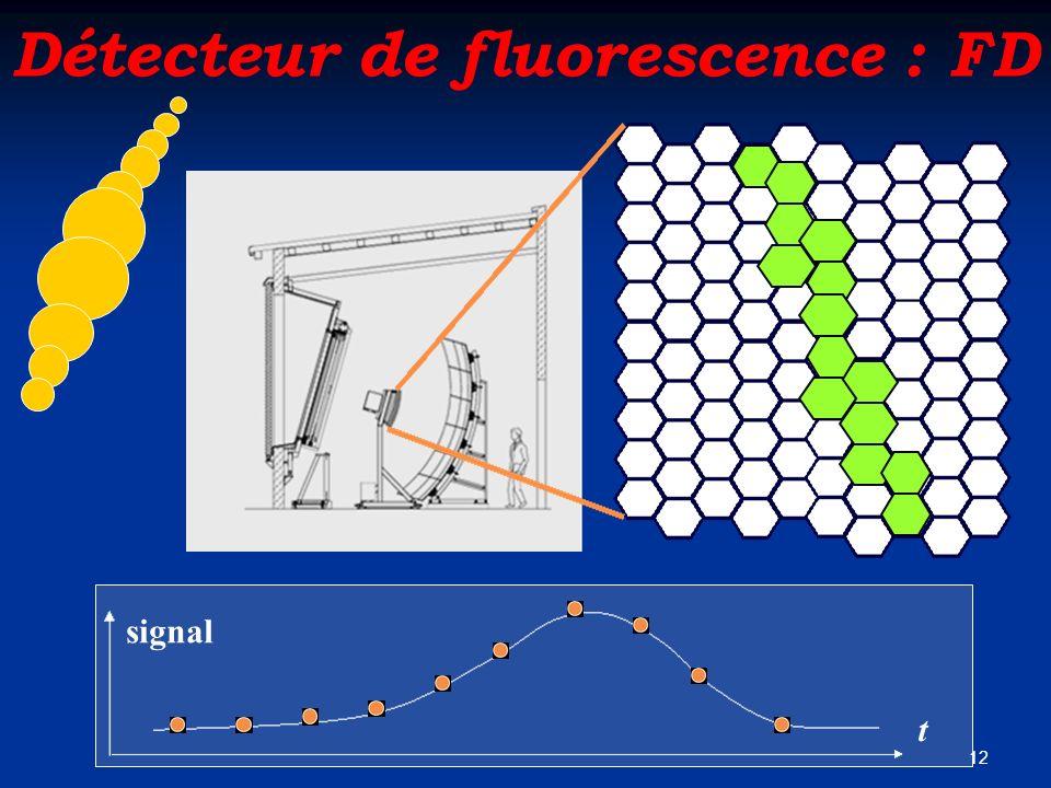 Détecteur de fluorescence : FD