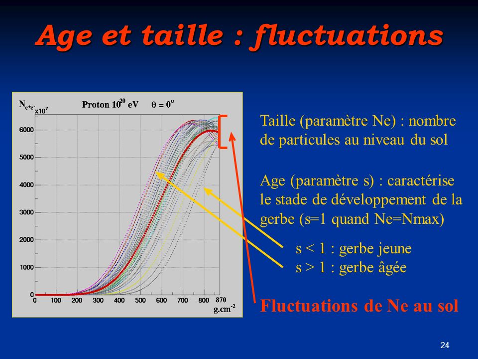 Age et taille : fluctuations