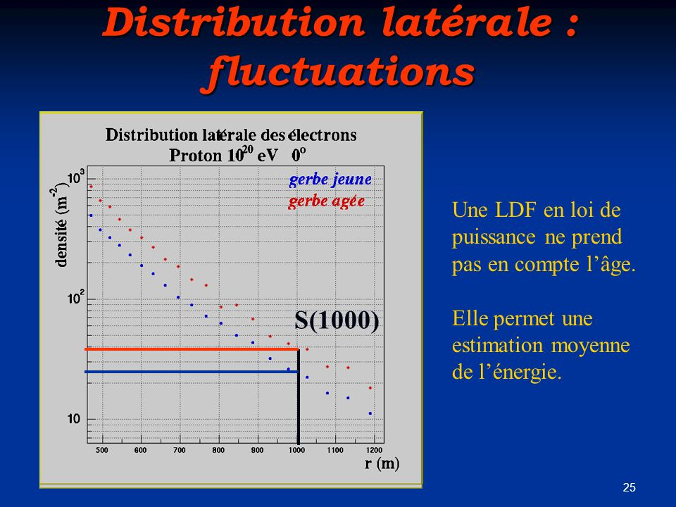 Distribution latérale : fluctuations