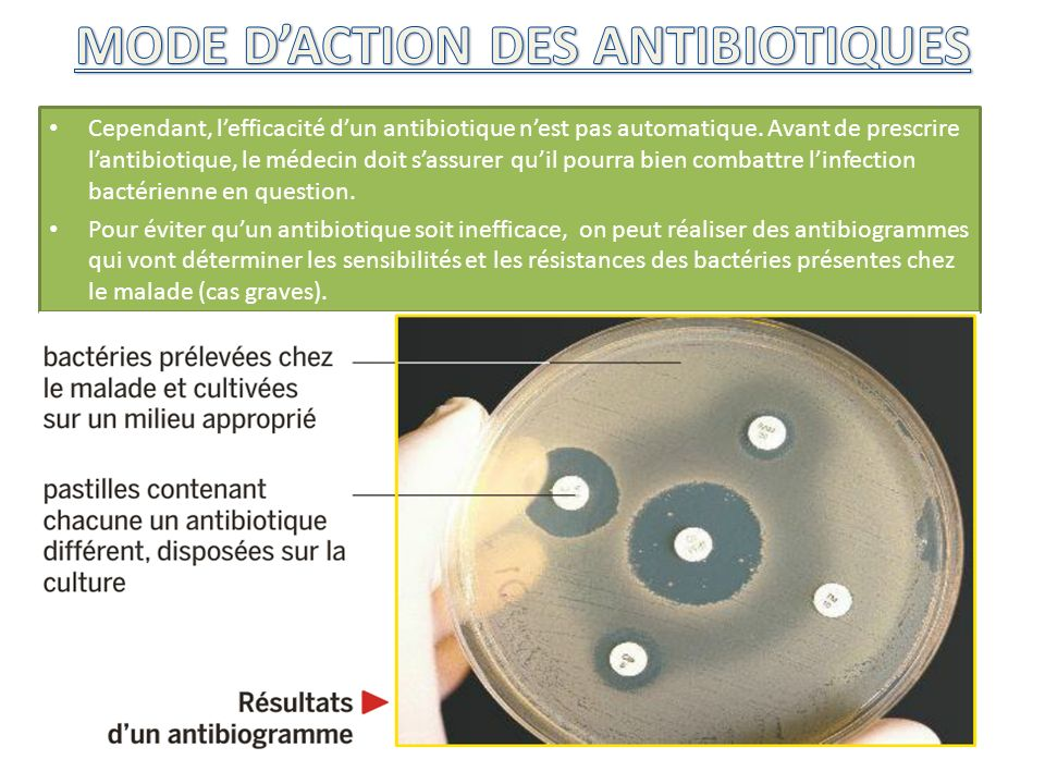 MODE D'ACTION DES ANTIBIOTIQUES