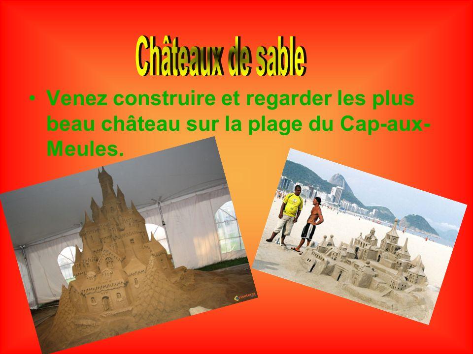 Châteaux de sable Venez construire et regarder les plus beau château sur la plage du Cap-aux-Meules.