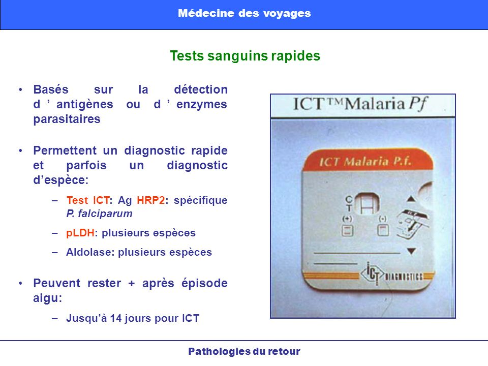 Tests sanguins rapides