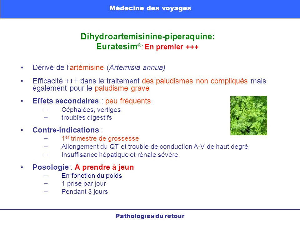 Dihydroartemisinine-piperaquine: Euratesim®: En premier +++