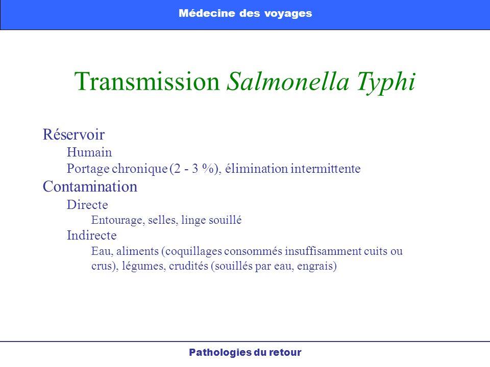 Transmission Salmonella Typhi