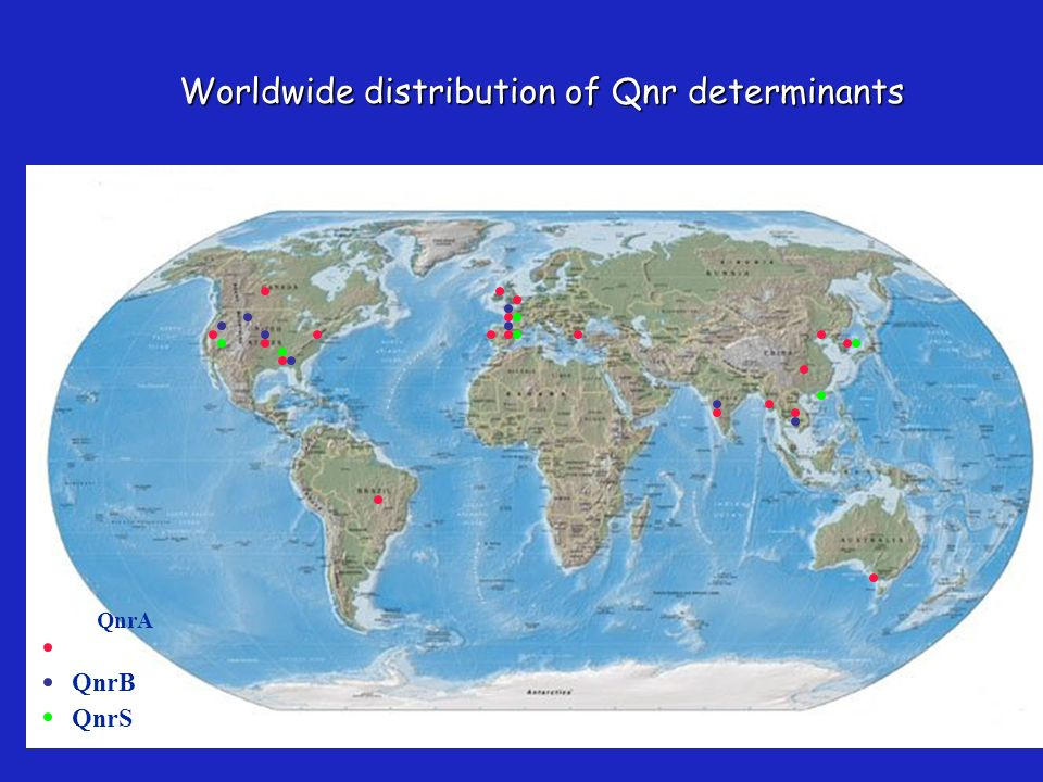 Worldwide distribution of Qnr determinants