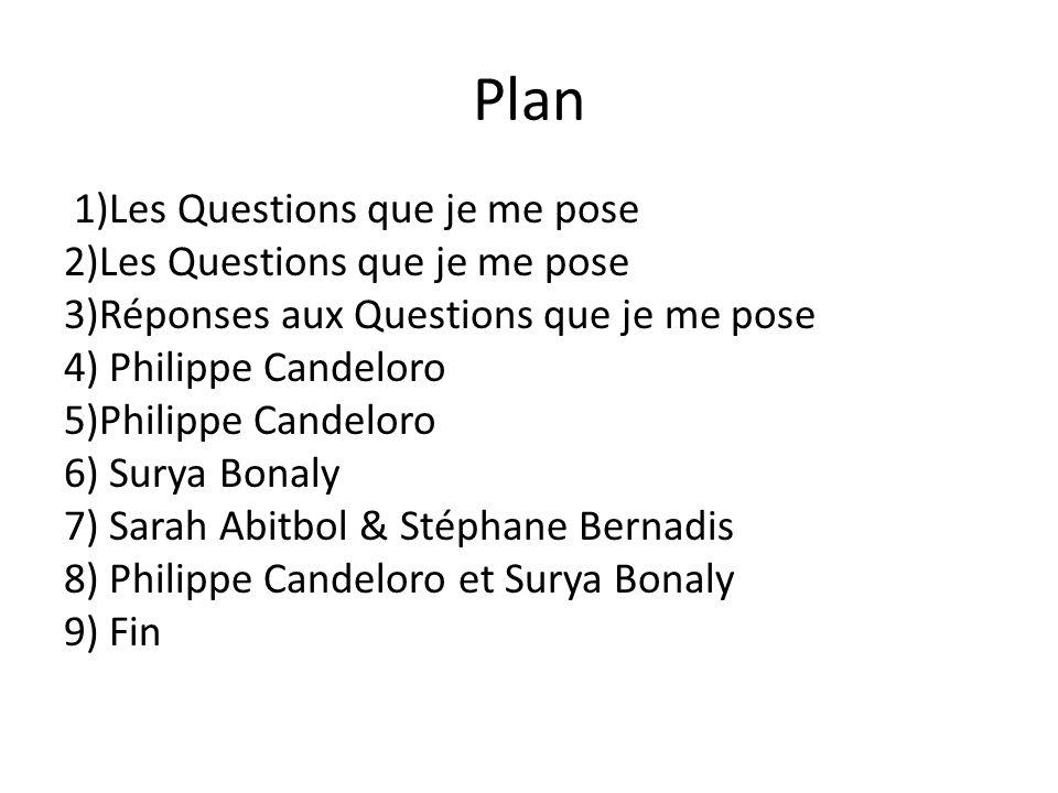 Plan 1)Les Questions que je me pose 2)Les Questions que je me pose