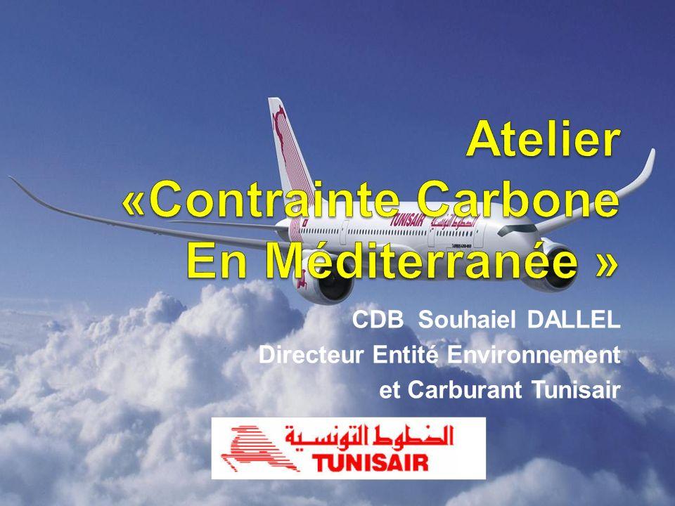 Atelier «Contrainte Carbone En Méditerranée »