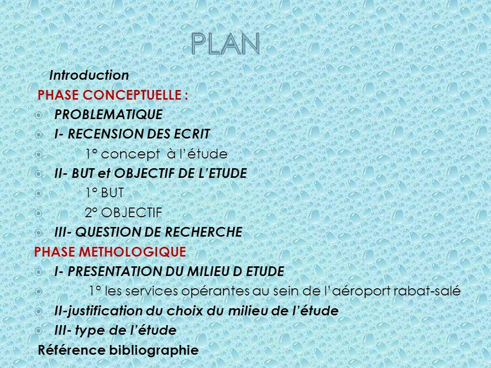PLAN Introduction PHASE CONCEPTUELLE : PROBLEMATIQUE