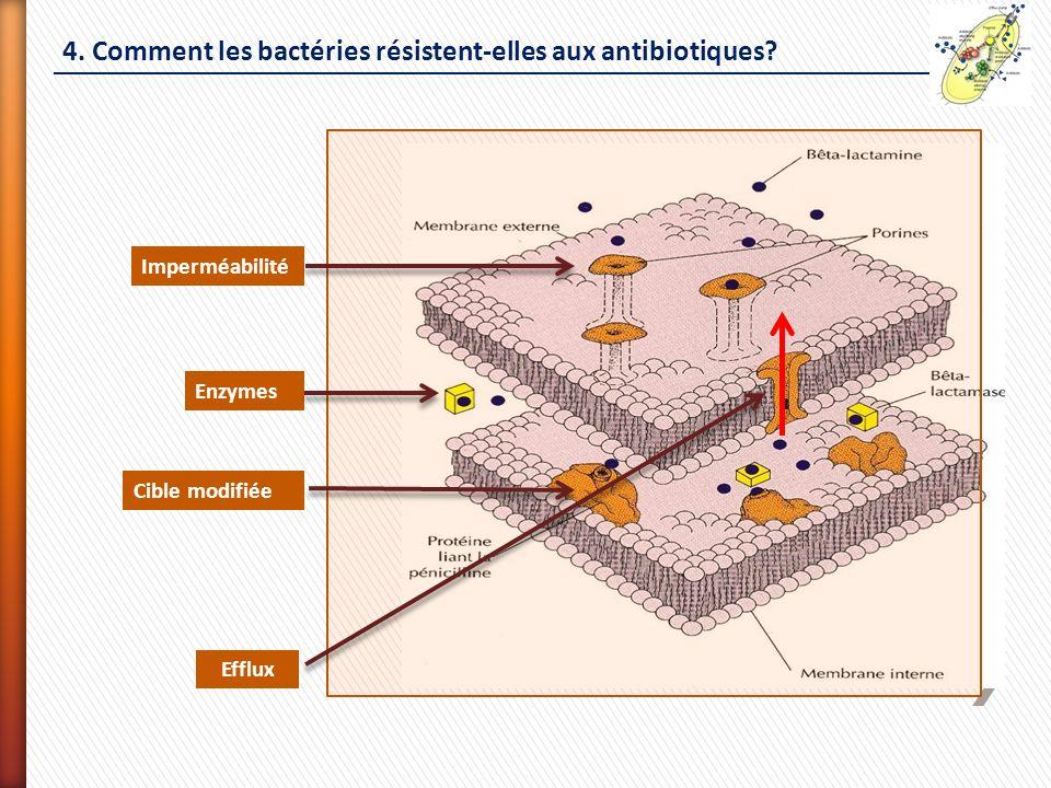 4. Comment les bactéries résistent-elles aux antibiotiques