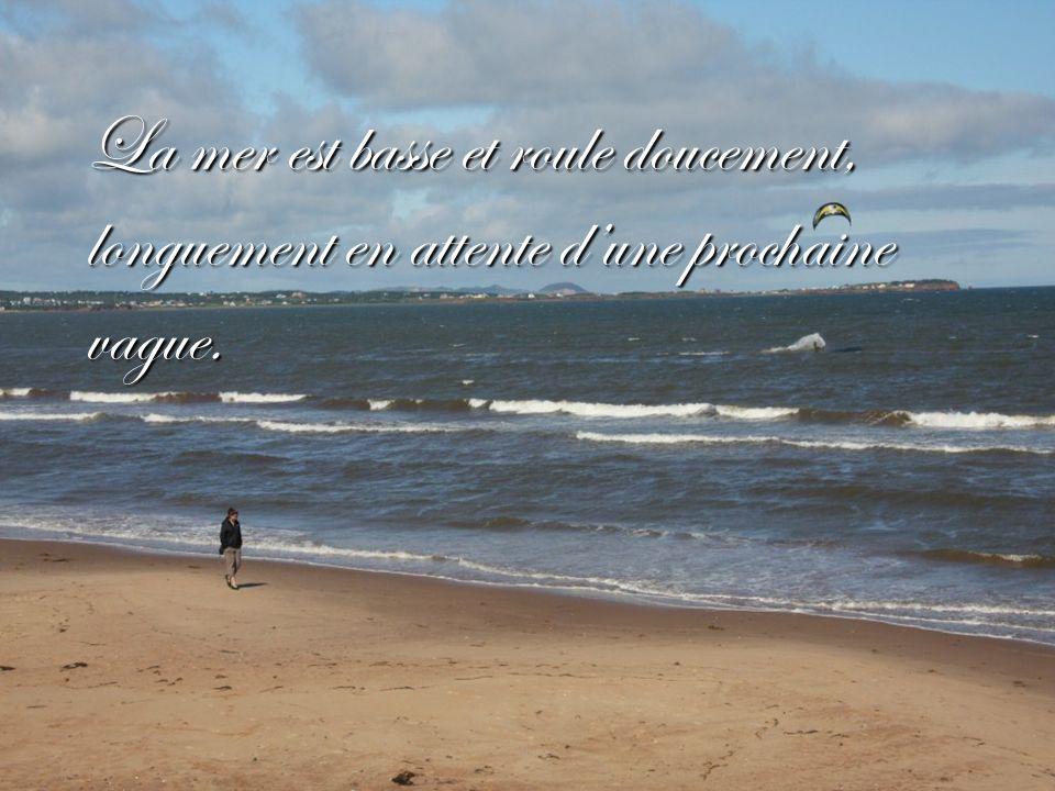 La mer est basse et roule doucement, longuement en attente d'une prochaine vague.