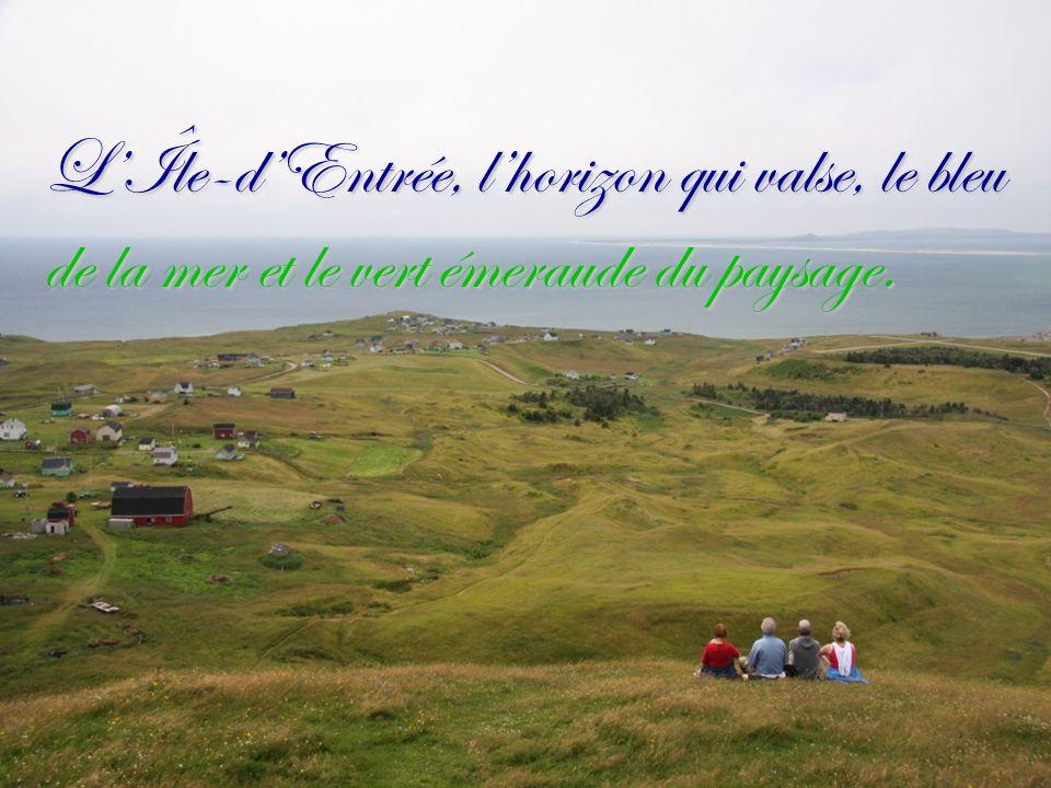 L'Île-d'Entrée, l'horizon qui valse, le bleu de la mer et le vert émeraude du paysage.