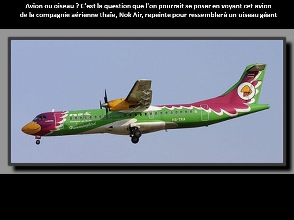 Avion ou oiseau C est la question que l on pourrait se poser en voyant cet avion