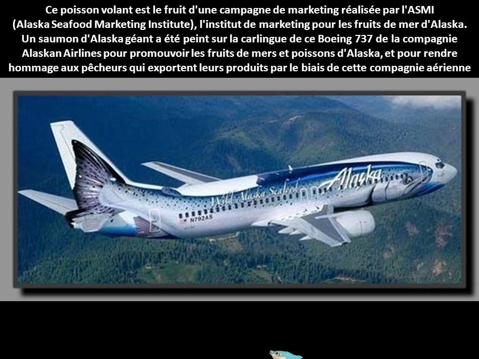 Ce poisson volant est le fruit d une campagne de marketing réalisée par l ASMI