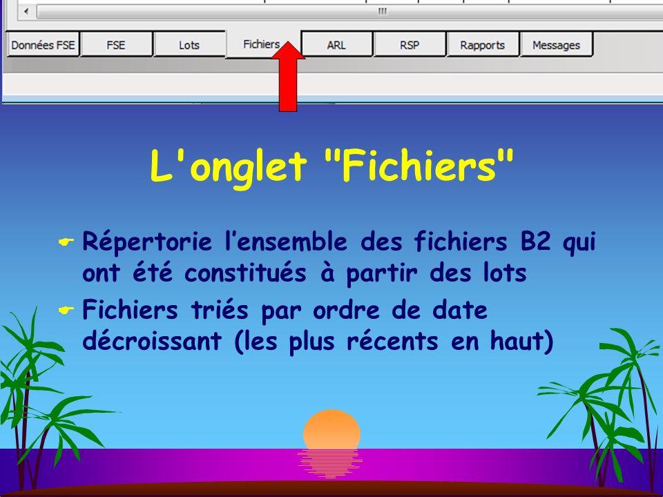 L onglet Fichiers Répertorie l'ensemble des fichiers B2 qui ont été constitués à partir des lots.