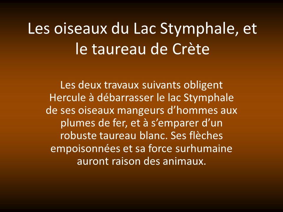 Les oiseaux du Lac Stymphale, et le taureau de Crète