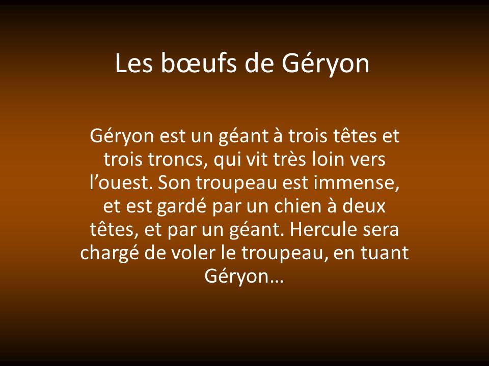 Les bœufs de Géryon