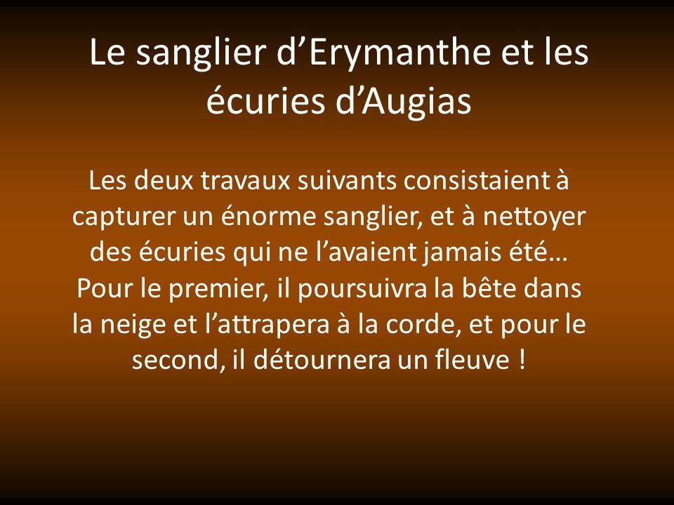 Le sanglier d'Erymanthe et les écuries d'Augias