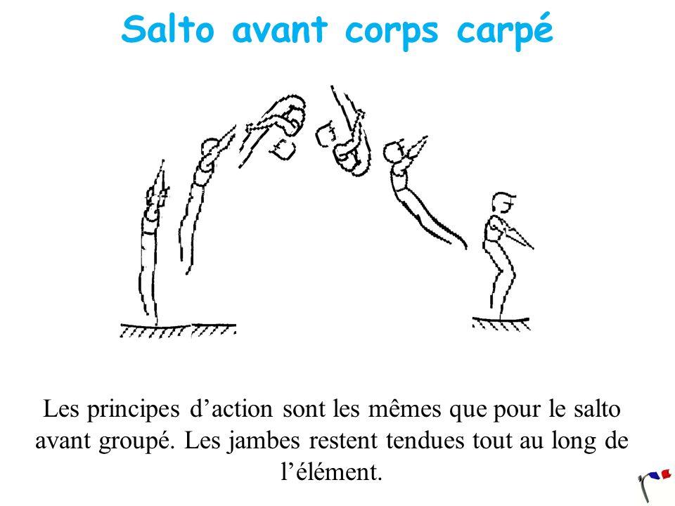 Salto avant corps carpé