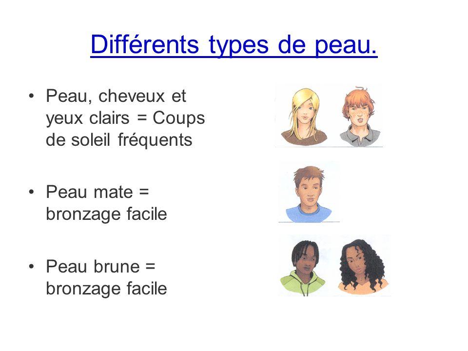 Différents types de peau.
