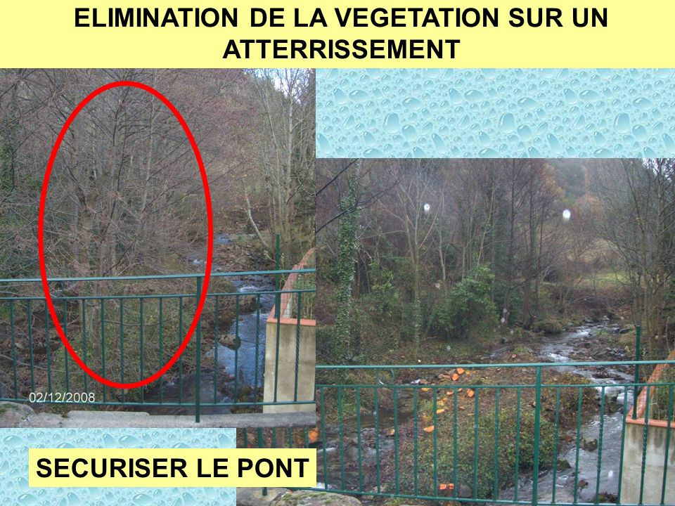 ELIMINATION DE LA VEGETATION SUR UN ATTERRISSEMENT