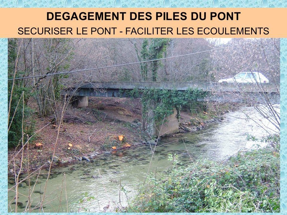 DEGAGEMENT DES PILES DU PONT