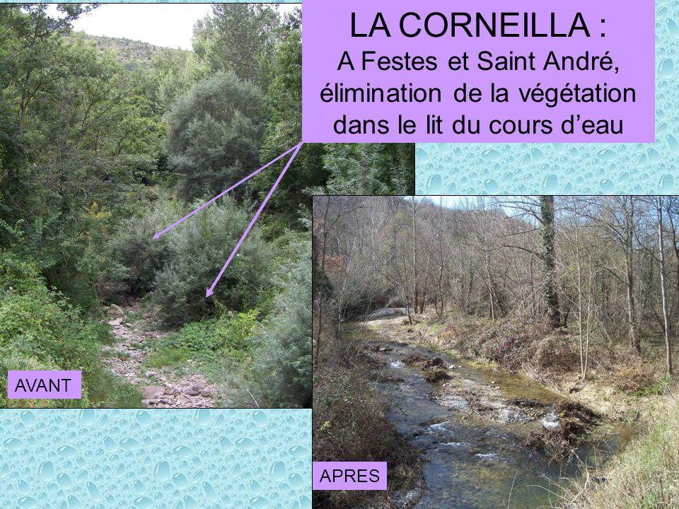 élimination de la végétation dans le lit du cours d'eau