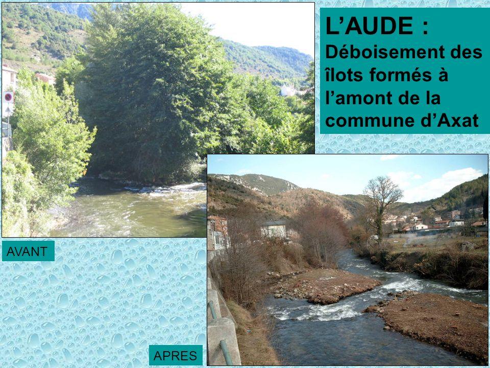 L'AUDE : Déboisement des îlots formés à l'amont de la commune d'Axat