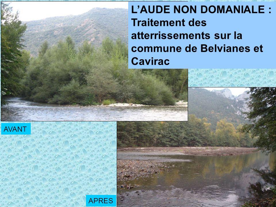 Traitement des atterrissements sur la commune de Belvianes et Cavirac