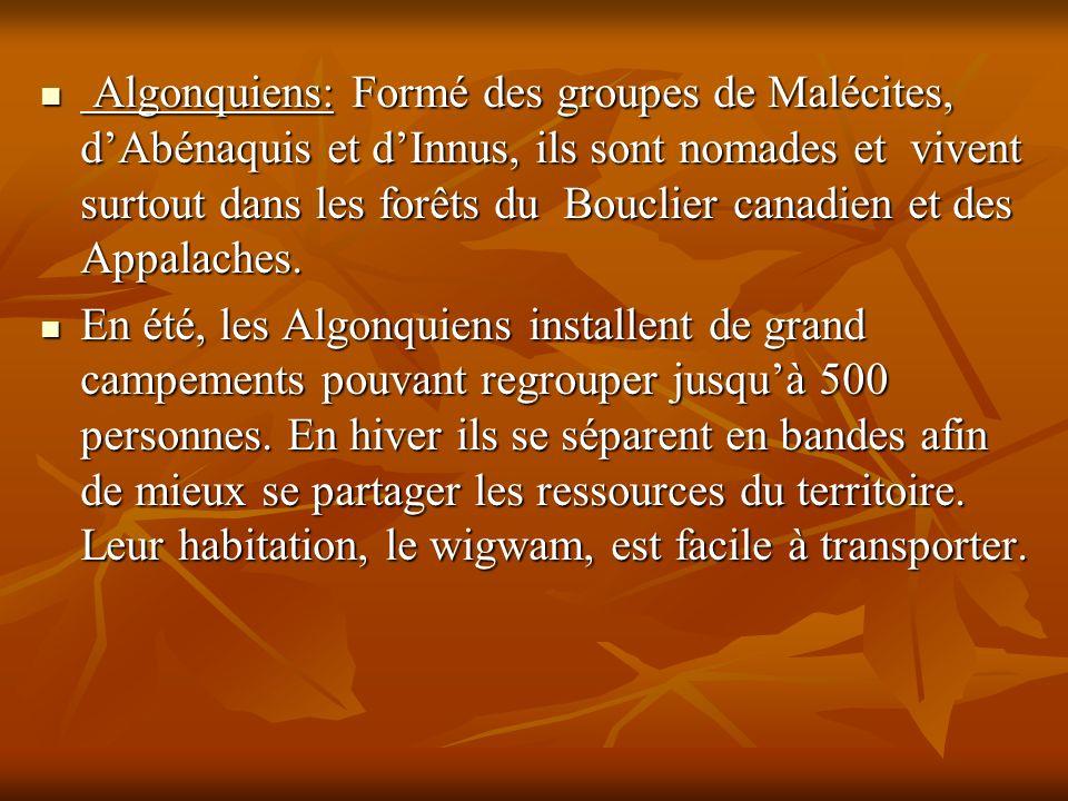 Algonquiens: Formé des groupes de Malécites, d'Abénaquis et d'Innus, ils sont nomades et vivent surtout dans les forêts du Bouclier canadien et des Appalaches.