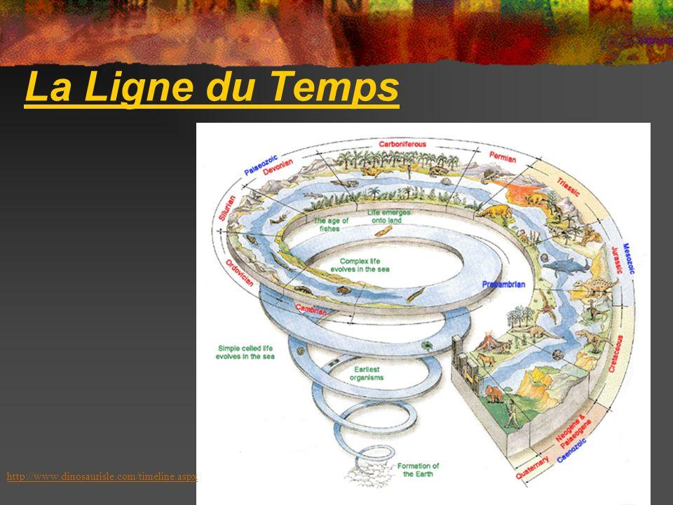 La Ligne du Temps http://www.dinosaurisle.com/timeline.aspx