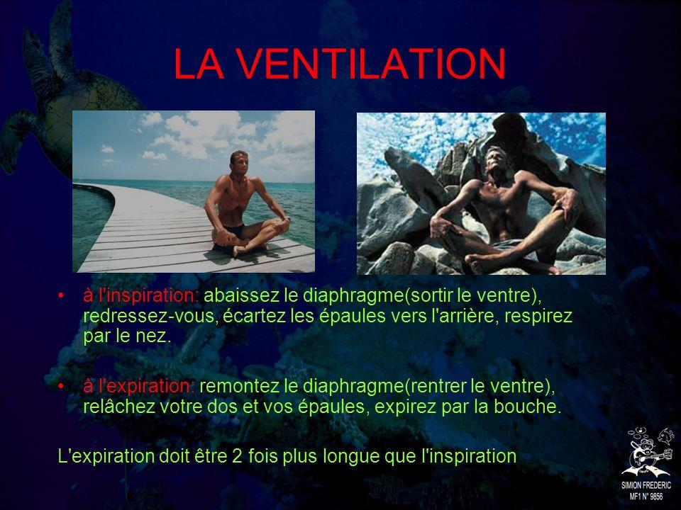 LA VENTILATION à l inspiration: abaissez le diaphragme(sortir le ventre), redressez-vous, écartez les épaules vers l arrière, respirez par le nez.