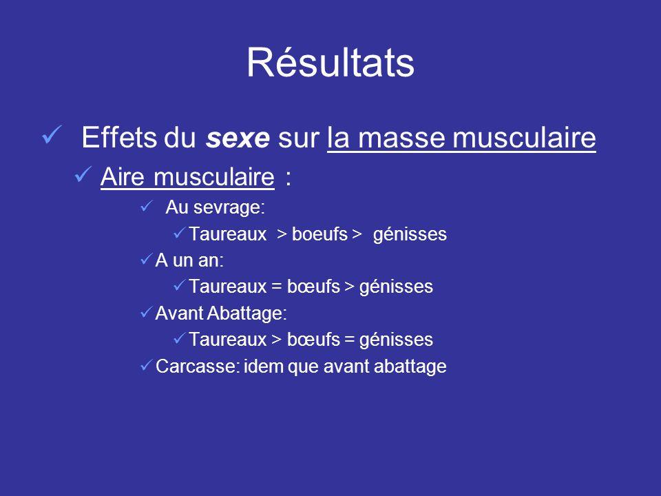 Résultats Effets du sexe sur la masse musculaire Aire musculaire :