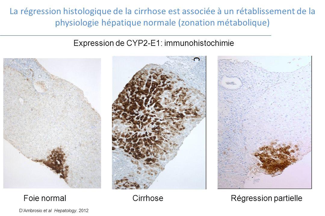 31.03.2017 La régression histologique de la cirrhose est associée à un rétablissement de la physiologie hépatique normale (zonation métabolique)