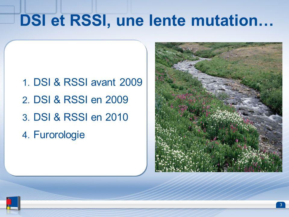 DSI et RSSI, une lente mutation…