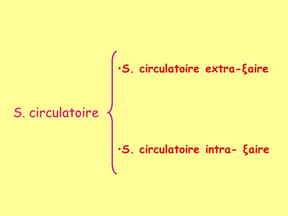 S. circulatoire S. circulatoire extra-ξaire