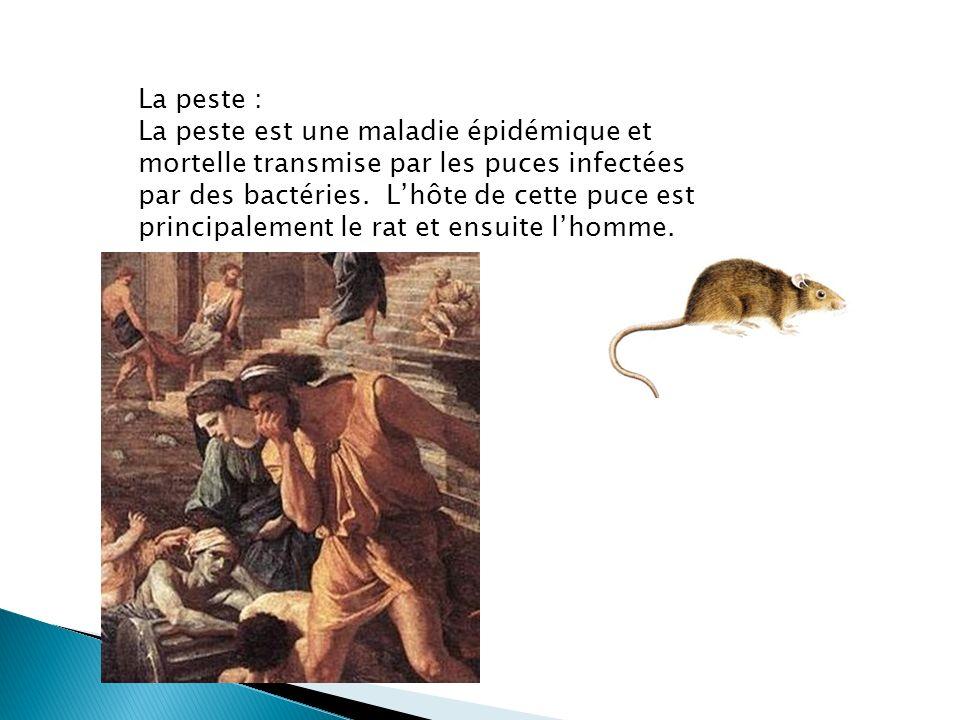 La peste :
