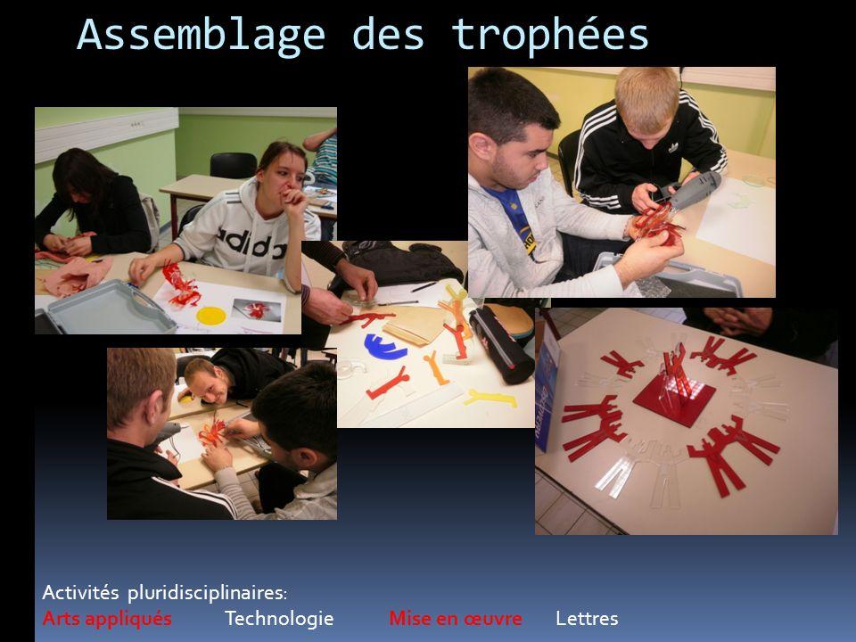 Assemblage des trophées